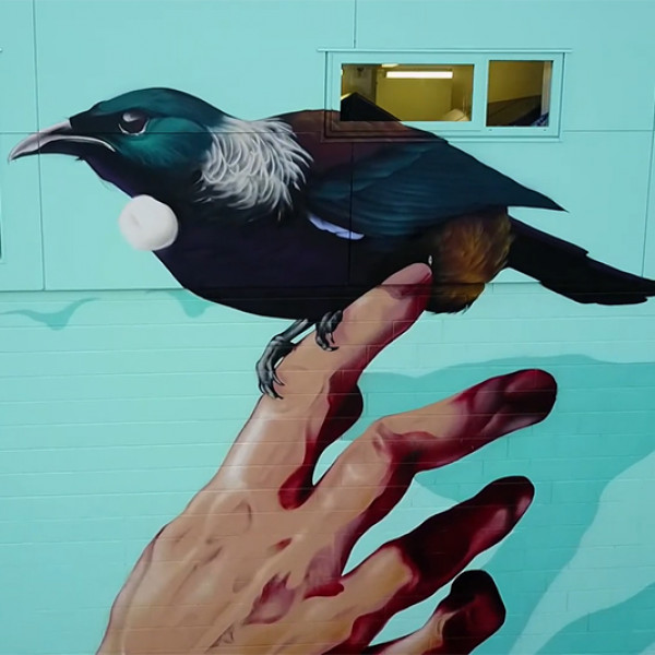 Street art: Tane Te Ohanga – The Bird Sanctuary  - 135 | Regional News